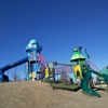 羽生水郷公園【強風吹き荒ぶ公園をまめ吉と闊歩する。】