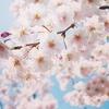 長野県の住宅リフォーム助成制度