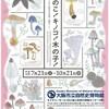 大阪■7/21~10/21■きのこ!キノコ!木の子!〜きのこから眺める自然と暮らし