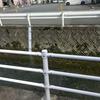 山口県下松市の竹屋川水位監視カメラの場所を尋ねてみた
