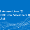 AWS EC2 AmazonLinux で CData ODBC Unix Salesforce Driverを利用する方法