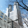 Tokyo Metropolitan Government Building observatory, What is different north tower and south tower?