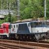 第1012列車 「      甲127 JR貨物DD200-4の甲種輸送を狙う  」