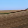 農家さんの営みから生まれる美しい景色