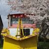 能登中島駅ラッセル車と桜