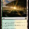【翻訳】モダンの定番カードをスタンダードでの再録について(前編)