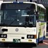 中国バス 306