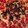 梅干し作り-4