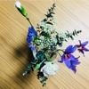 2週に一度のお花、第2弾が届きました