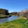 元荒川を歩く その2 北越谷・出津橋から蓮田・川島橋