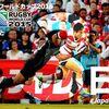 ラグビーワールドカップ2015(3)
