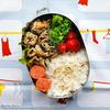 #522 五目がんもとヒジキの煮物の炒め煮弁当