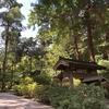 【鎌倉いいね】行く夏を惜しみ、おウチで鎌倉さんぽを。