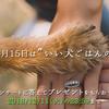 """【アンケートに答えて素敵なプレゼントを!】 2018年""""11月15日""""は「いい犬ごはんの日」キャンペーン"""