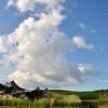 夏色パレット♪  青空と夏雲