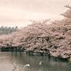 空から日本を見てみよう ― 京成電鉄本線東京編 ―