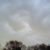 12月10日(火)曇り時々雨 爆弾低気圧?