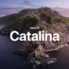 開発者やデザイナーは要注意?!シーズ社員達がMac OSをCatalinaへアップデートした体験談。