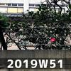 週報 2019W51