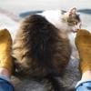 なぜ足や靴が臭くなるのか?原因と消臭対策