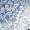 秋葉原の青空