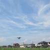 神原町花の会(花美原会)(355)  SBS静岡放送のドロ-ンによるコスモス畑の撮影