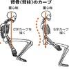 背骨を意識