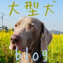 大型犬blog