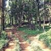 日和田山-物見山〜おひとり様の意味
