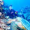 ♪ベスト・オブ・ベストの体験ダイビング in 慶良間♪〜沖縄体験ダイビング〜