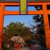 路地裏桜2017~「平野神社」