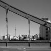 清洲橋より眺めるスカイツリー(カラーネガのモノクロ化)