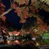 FUJIFILMのレンズレンタルサービスで、X-E3と1泊2日の京都旅行に行ってみた