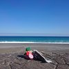 🎀熊野灘🎀