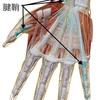 腱鞘炎・ばね指の問診と検査について