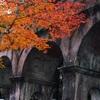 京都の紅葉スポット「南禅寺」で秋を満喫。水路閣ともみじの組み合わせが素晴らしい