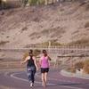朝の散歩を習慣に!歩くことで得られる様々な健康効果