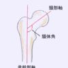 【解剖・生理学】股関節の構造(頸体角・前捻角)と特徴