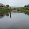 利根運河に憩う