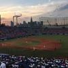 僕は野球はもちろん好きだけど、それ以上に球場が大好きなんです!