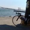 海岸線サイクリング 金谷~御前崎~浜松 浜名湖 無事完走