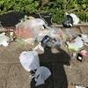 路上のゴミが半端ではない七夕祭り
