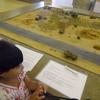 浮遊体験のあとは「死海博物館」で学ぼう!デッドシー・パノラマ・コンプレックス(死海・ヨルダン