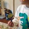 子供たちが飽きたら、定期的に玩具を入れ替える