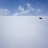 雪と空と犬
