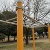 懸垂と鉄棒