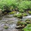 ◆'18/05/25      母と二人で獅子ヶ鼻湿原&元滝へ④