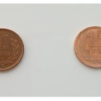 【必見】10円硬貨をあるもので奇麗に!!【おもしろ秘技】
