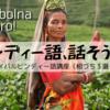 【ヒンディー語を話そう】インドで使えるサバイバルヒンディー語講座(相づち3選+α)
