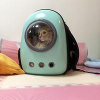 おしゃれでかわいい犬猫のリュック型キャリーバッグ!背中に拡張スペースがある宇宙船カプセル型ペットバッグ